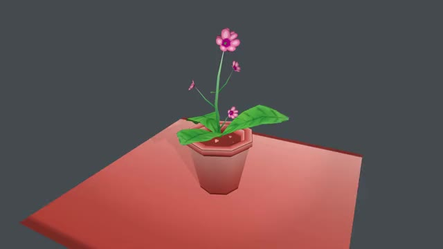 Watch and share Plant (1080p) GIFs on Gfycat