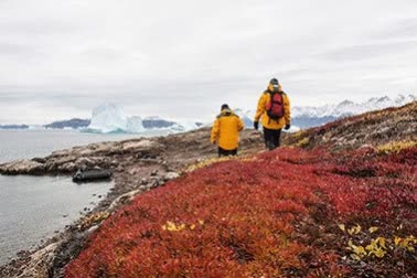 Watch and share Antarctic Tours GIFs by polarholidays on Gfycat