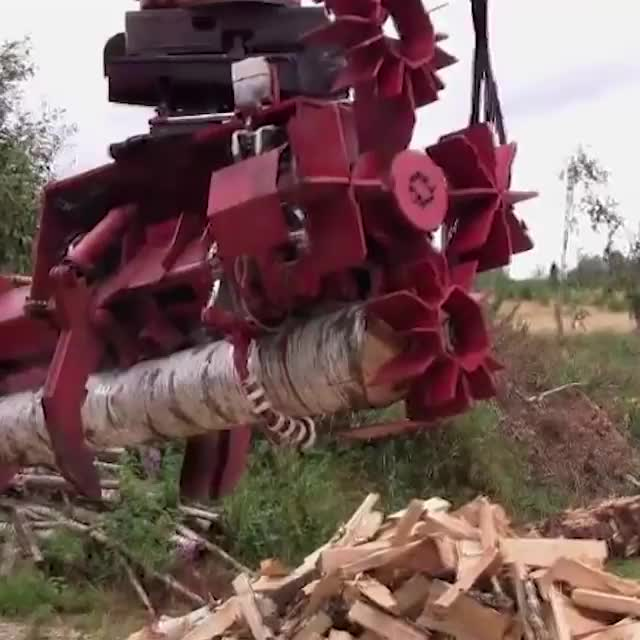 Watch this excavator attachment shred these logs in a split second. GIFs