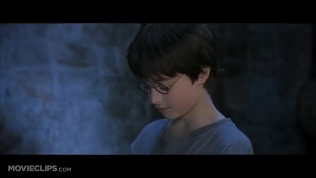 Watch Harry Potter and the Sorcerer's Stone (1/5) Movie CLIP - Harry's Birthday (2001) HD GIF on Gfycat. Discover more 013_vh, 01tspcn, 05sq84, 06ltr, 071yw3, 255538, HarryPotter, amg, blockbusters, movieclipsdotcom GIFs on Gfycat