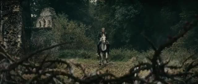 Watch this trending GIF on Gfycat. Discover more the Woods 2014 GIFs on Gfycat