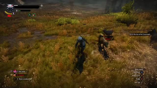 Watch Witcher 3 - Dolphin Dive! GIF by @sab0t on Gfycat. Discover more dolphin dive, ragdoll, witcher 3 GIFs on Gfycat