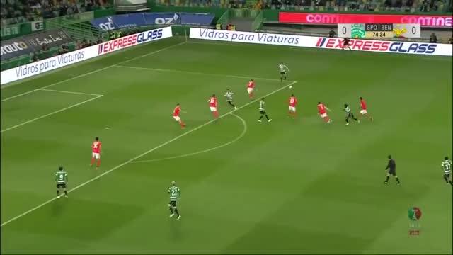Watch and share Portuguese League GIFs and Liga Portuguesa GIFs on Gfycat