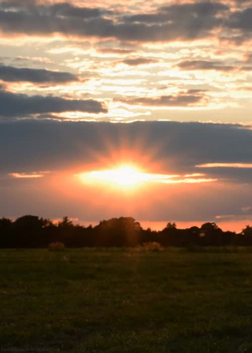 Watch and share Goodnight Sunshine GIFs on Gfycat