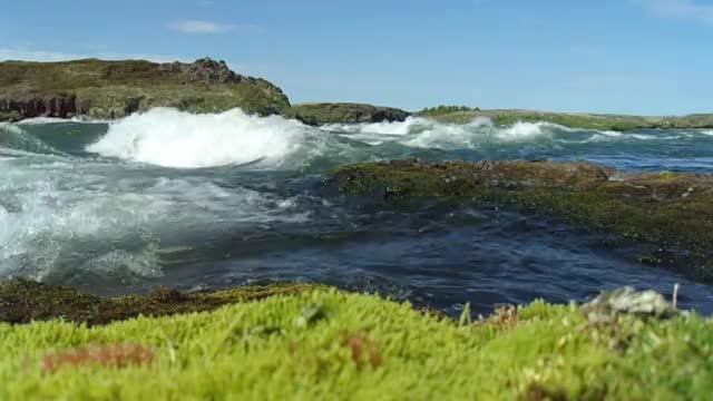 Watch this river GIF by @miszapop on Gfycat. Discover more iceland, nature, river, sunny day, wild GIFs on Gfycat