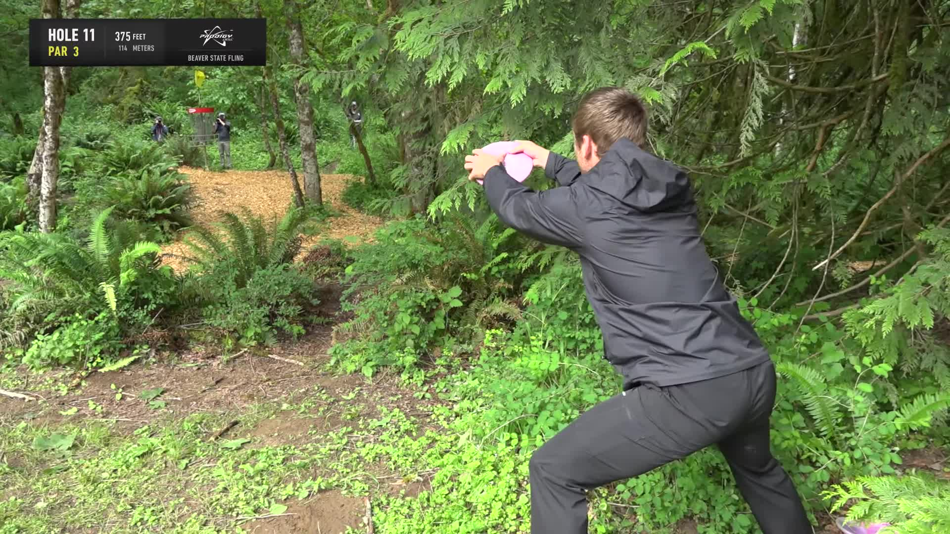 ace, bsf, dela, delaveaga, dgpt, dgwt, disc, disc golf, frolf, hole in one, masters cup, mcbeast, milo, nate sexton, nt, paul mcbeth, pdga, simon lizotte, tournament, worlds, 2019 Beaver State Fling - Round 1 Part 2 - Kevin Jones hole 11 putt GIFs