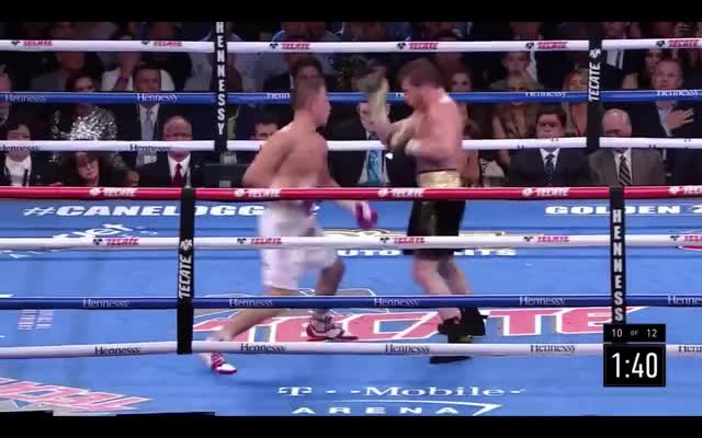 Watch CANELO GIF on Gfycat. Discover more boxing GIFs on Gfycat