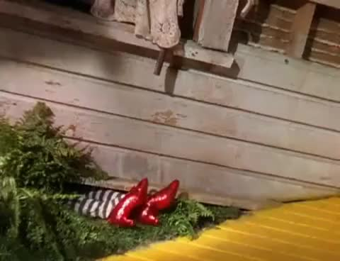 Watch Wicked witch feet curl GIF on Gfycat. Discover more related GIFs on Gfycat