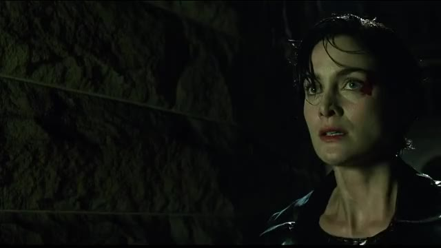 Watch and share Carrie Anne Moss GIFs and Matrix GIFs on Gfycat