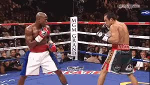 Watch mayweather vs marquez GIF on Gfycat. Discover more related GIFs on Gfycat
