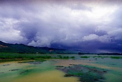 Beautiful Bangladesh GIF | Find, Make & Share Gfycat GIFs