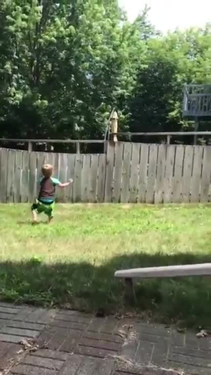 Watch and share Child Plays With His Best Friend Across The Fence GIFs on Gfycat