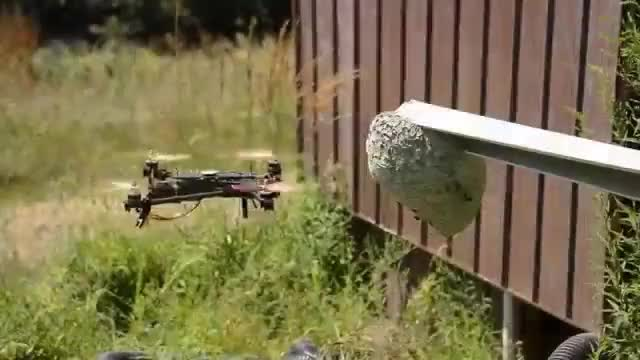 Watch and share Quadcopter GIFs and Hornets GIFs on Gfycat