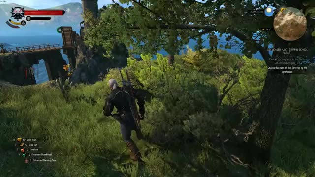 Watch and share Thewitcher3 GIFs by adrian28 on Gfycat