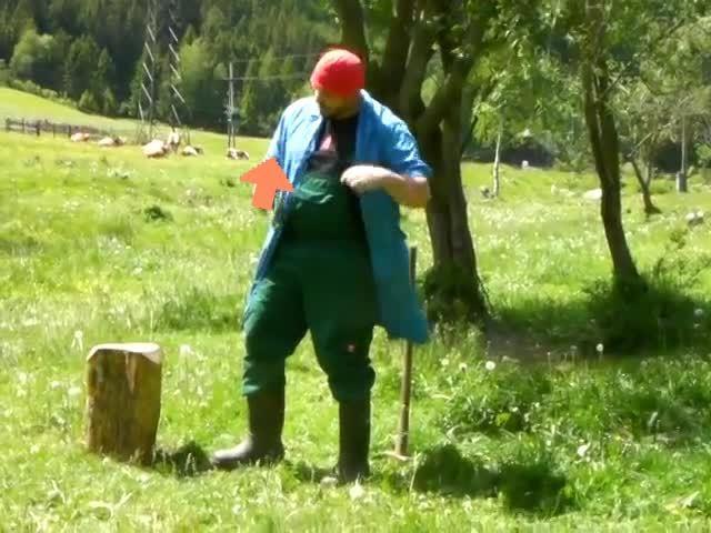 upvotegifs, Austrian Farmer Sledgehammer Downvote [OC] (reddit) GIFs