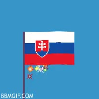 Watch and share 🇸🇰 — Slovakia GIFs on Gfycat