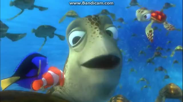 Watch and share Finding Nemo East Australian Current Journey GIFs on Gfycat