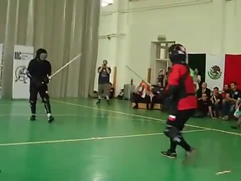 wma, I don't recall seeing this technique in the codices... (from the First International IFHEMA Cup's finals) (reddit) GIFs