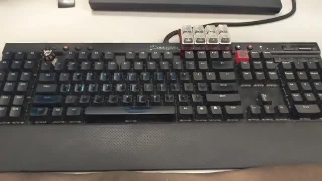 K95 RGB with translucent caps