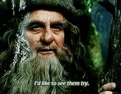 Watch and share My Gif The Hobbit Sylvester McCoy Radagast G:th GIFs on Gfycat
