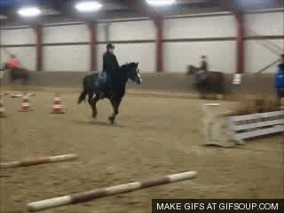 Watch Riding GIF on Gfycat. Discover more related GIFs on Gfycat