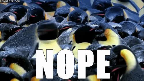 penguins hea GIFs