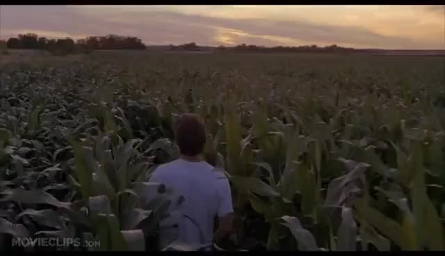 Watch If you build it GIF on Gfycat. Discover more field of dreams GIFs on Gfycat