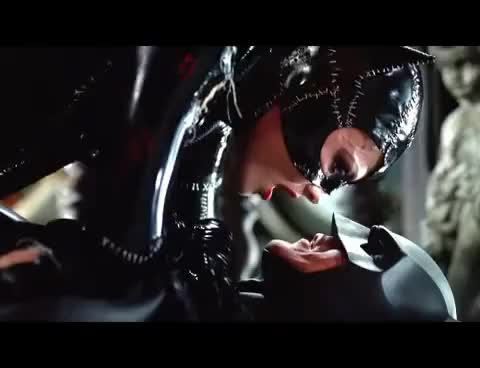 Watch this catwoman GIF on Gfycat. Discover more beso, catwoman, kiss, selina kyle GIFs on Gfycat