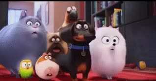 Watch The Secret Life of Pets - Great! GIF by @revwaldo1 on Gfycat. Discover more related GIFs on Gfycat