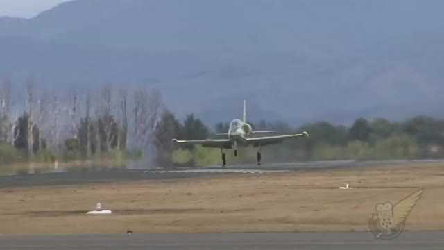 Watch and share L-39 Albatross Jet Trainer Hit By Whirlwind On Takeoff. (reddit) GIFs by forte3 on Gfycat
