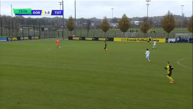 Watch and share Maghona Attempted Lob GIFs by blubbey on Gfycat