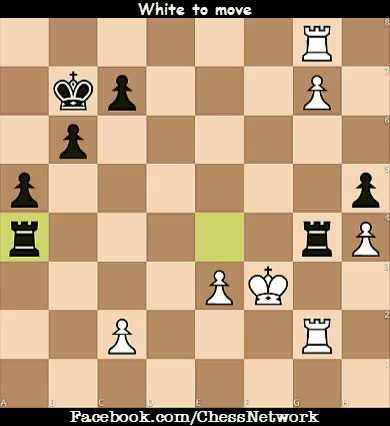 Watch and share Chess Network GIFs on Gfycat