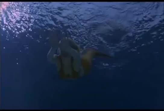 rikki, swimming GIFs
