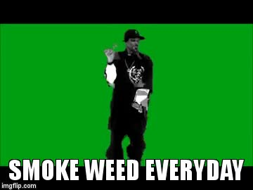 Watch and share SMOKE WEED EVERYDAY! GIFs on Gfycat