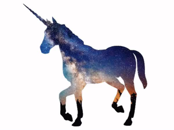 Watch and share Unicorn GIFs by Aaron Outram on Gfycat