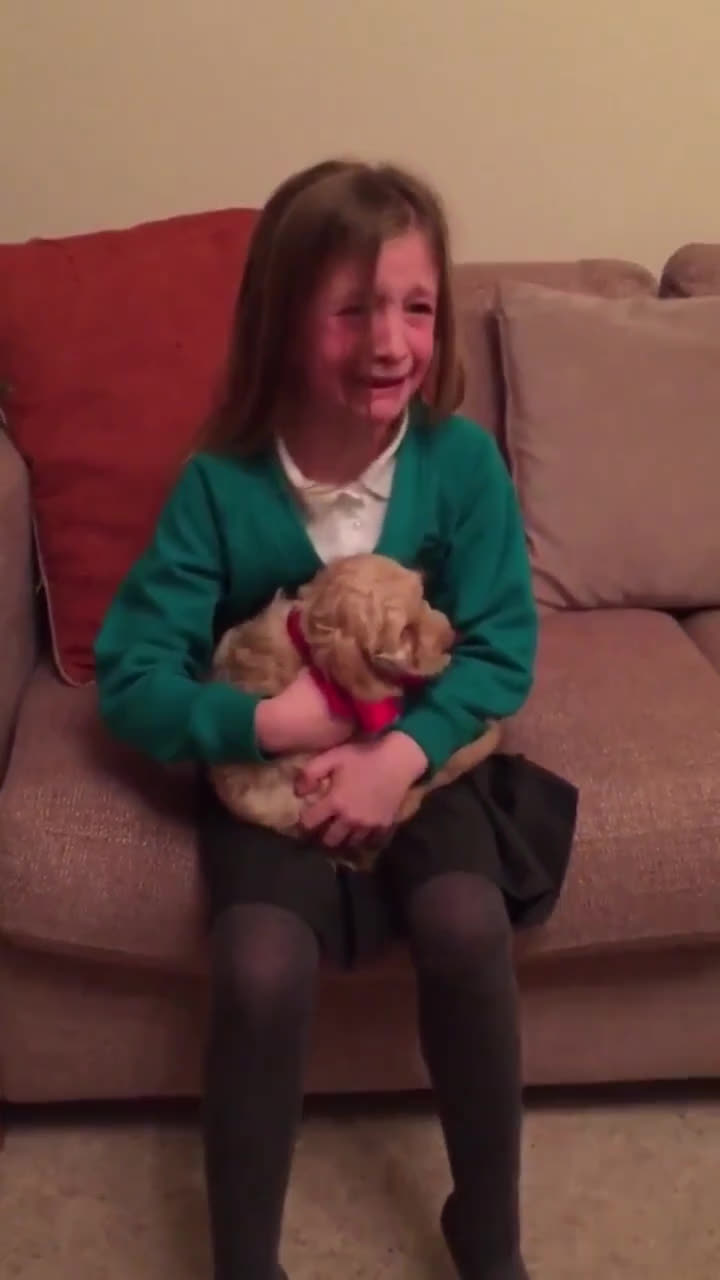 MadeMeSmile, Little girl gets a puppy. I rarely actually smile at gifs online, but this really made me happy. (reddit) GIFs