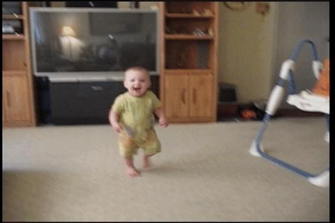 childrenfallingover, hitmanimals, Hitman cat takes out target then escapes (reddit) GIFs