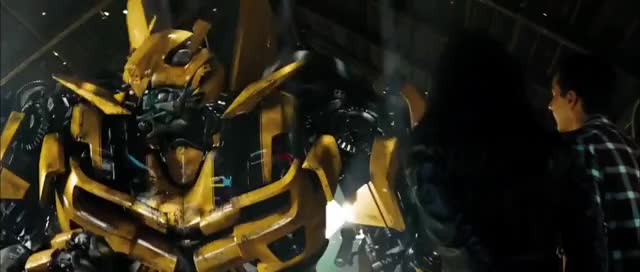 Watch bumblebee GIF on Gfycat. Discover more related GIFs on Gfycat