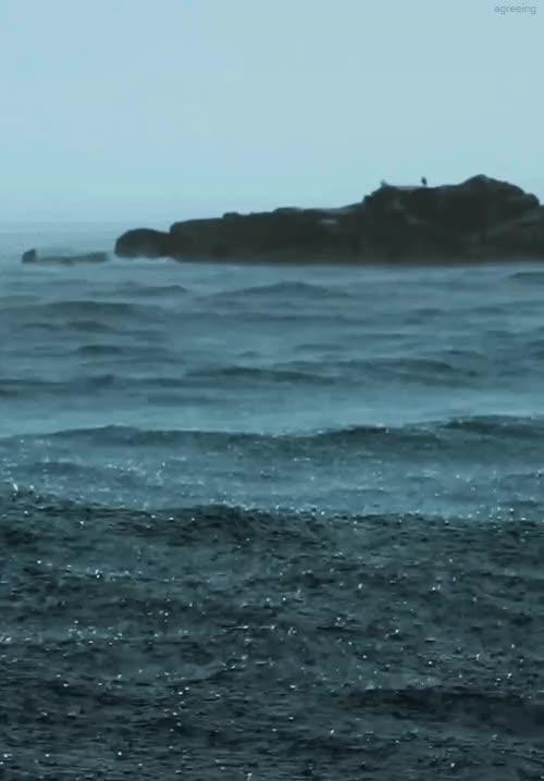 Watch and share Море GIFs on Gfycat