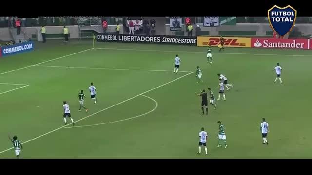 Watch and share Atlético Tucumán GIFs and Palmeiras GIFs on Gfycat