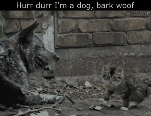 Watch Hurr durr I'm a dog, bark woof GIF by @usrnone on Gfycat. Discover more cat, funny, gif GIFs on Gfycat