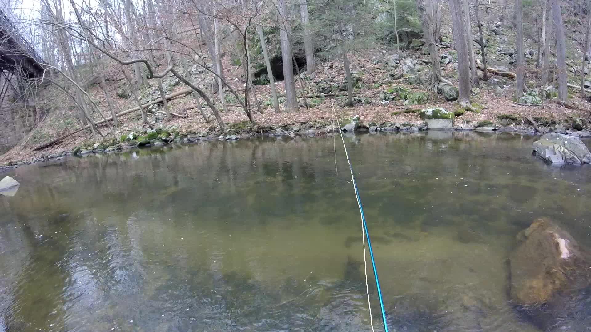 flyfishing,  GIFs