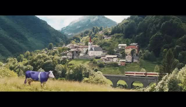 Watch and share Milka Ad Lost & Found GIFs on Gfycat