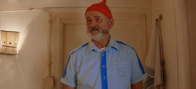 Watch The Life Aquatic gifs GIF on Gfycat. Discover more related GIFs on Gfycat
