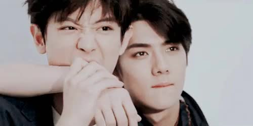 Watch  Chanyeol bitting Sehun's hand during the photoshooting  GIF on Gfycat. Discover more ;u;, chanhun, chanyeo;, exo, exo k, i like how sehun is trying to be all sexy and stuff and chanyeol ju s t .. ... . . .., myedits, mygifs, sehun GIFs on Gfycat