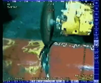 oddlysatisfying, thisismylifenow, This poor DeepSea Crab got sucked into the pipeline because of pressure differential. GIFs