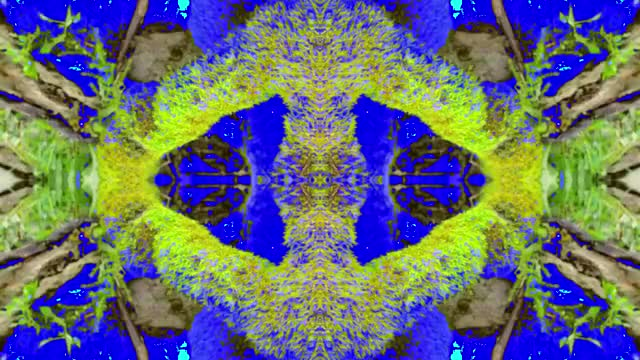 Watch and share Dmt GIFs on Gfycat