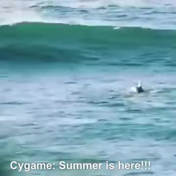 Watch and share The Fate Of Summer Berserker GIFs on Gfycat
