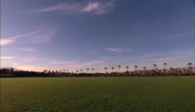 Watch and share Coachella GIFs on Gfycat