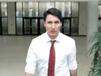 Watch and share Justin Trudeau GIFs on Gfycat